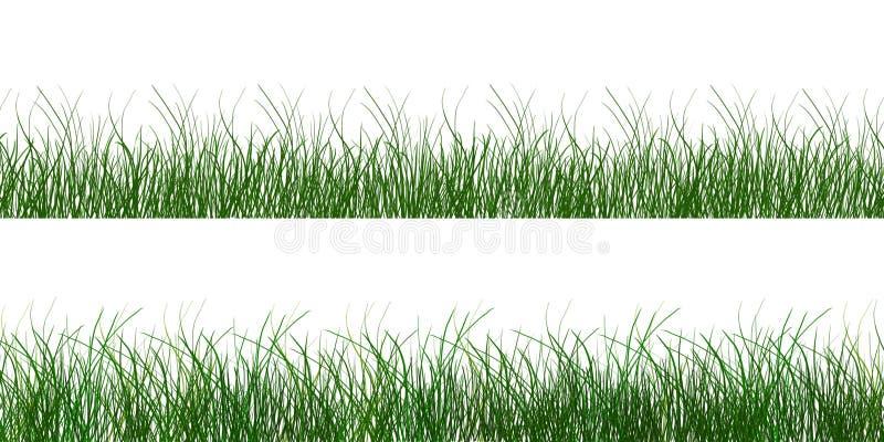 Herbe molle verte de ressort d'été photo stock