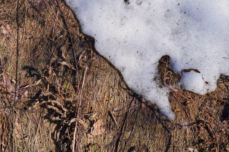 Herbe sèche et neige de fonte, vue supérieure image stock