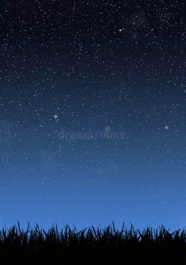 Herbe sous le ciel nocturne image libre de droits