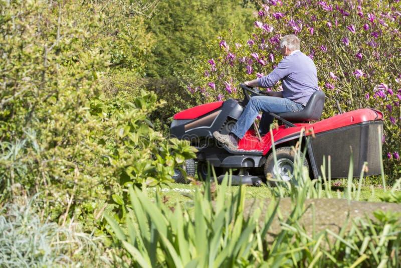 Herbe supérieure de coupe de jardinier images libres de droits