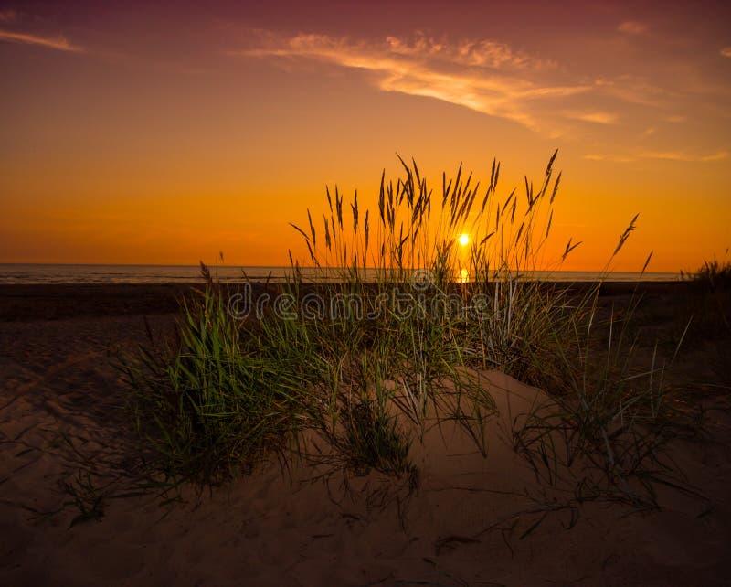 Herbe sur la dune et le coucher du soleil de sable au-dessus de la plage photos libres de droits