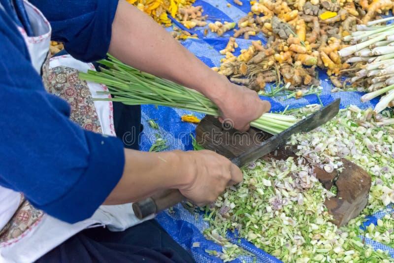 Herbe thaïe image stock