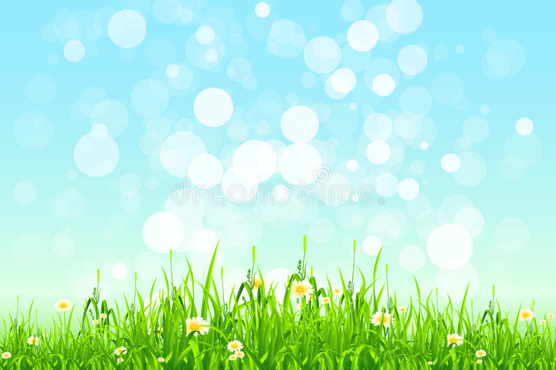 Herbe verte illustration stock