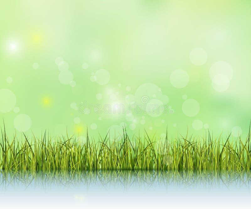 Herbe verte avec la réflexion sur le plancher de l'eau Effet de Bokeh sur le fond vert clair et bleu de couleur en pastel illustration stock