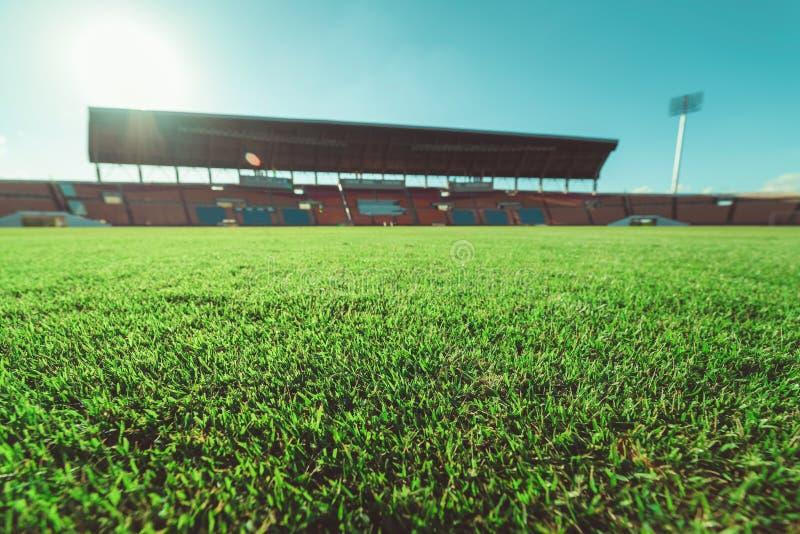 Herbe verte dans le stade de football, vintage images libres de droits