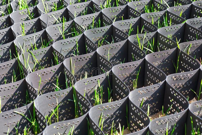 Herbe verte dans un cadre noir en plastique de nid d'abeilles pour empêcher l'érosion du sol photographie stock libre de droits