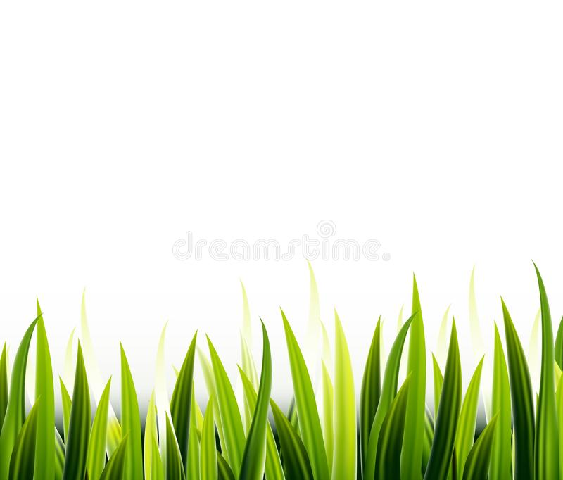 Download Herbe Verte De Beauté Pour Vous Conception Illustration Stock - Illustration du jardin, detail: 45363646