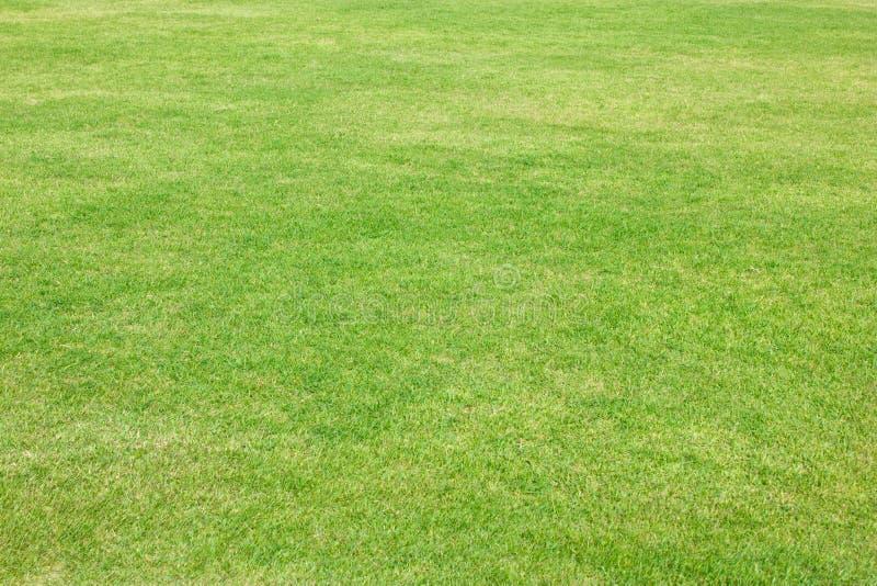Herbe verte de terrain de football. photos stock