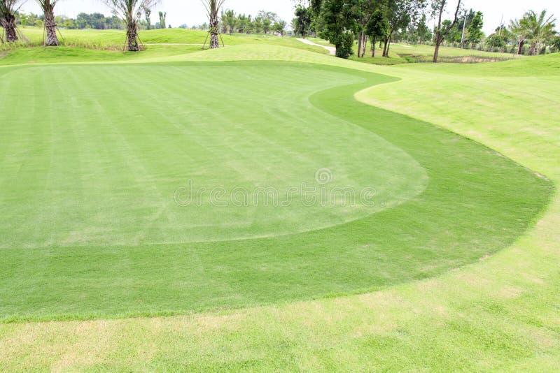 Herbe verte de terrains de golf photo stock