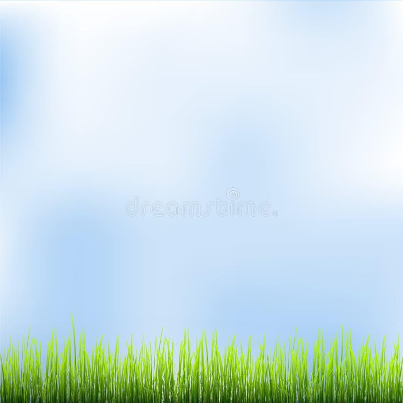 Herbe verte et ciel bleu illustration stock