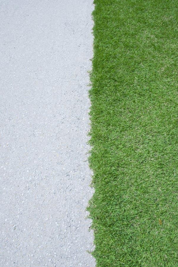 Herbe verte et route blanche. photos stock