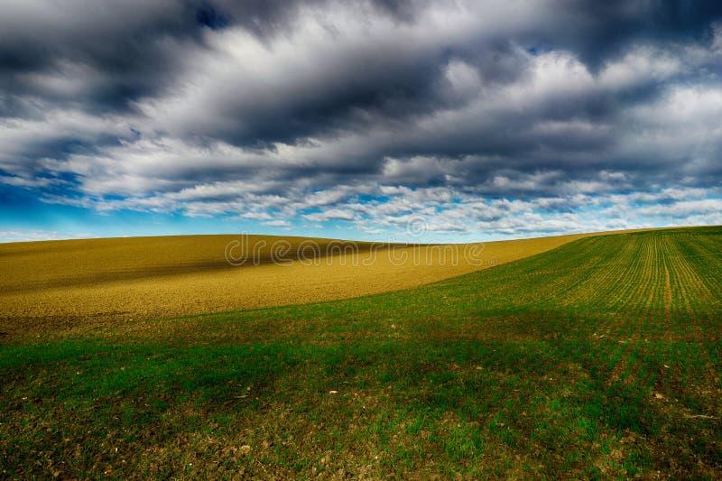 Herbe verte et terre sèche sous un ciel nuageux image stock