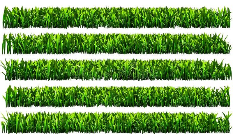 Herbe verte, fond transparent de png illustration de vecteur