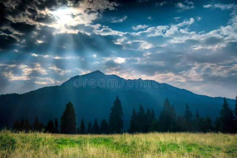 Herbe verte près de montagne la nuit images libres de droits