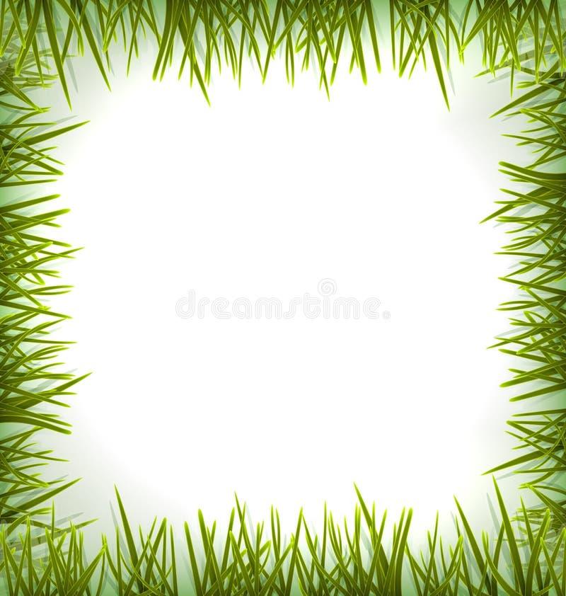 Herbe verte réaliste comme le cadre d'isolement sur le blanc illustration stock