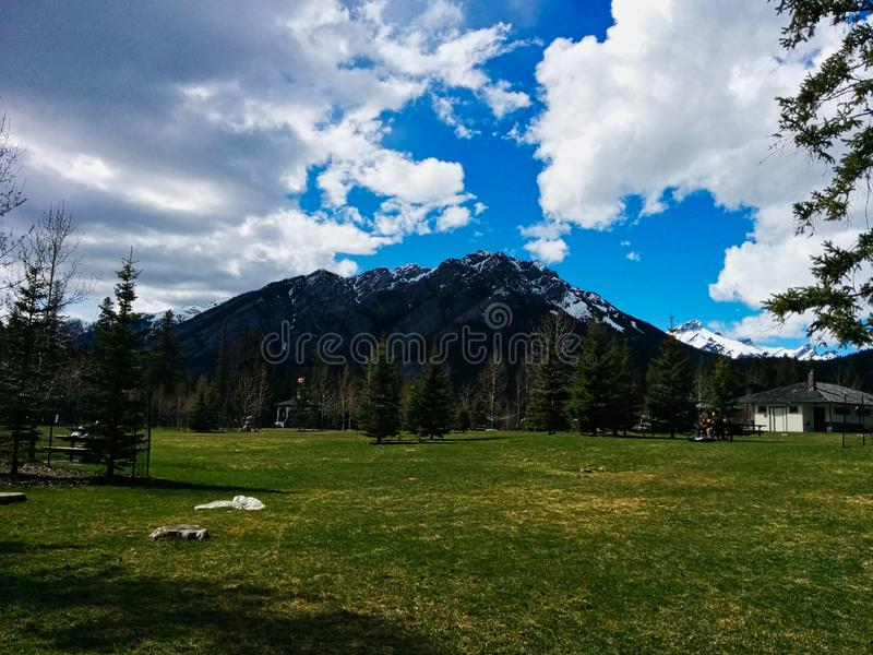 herbe verte sur l'avant des montagnes photographie stock libre de droits