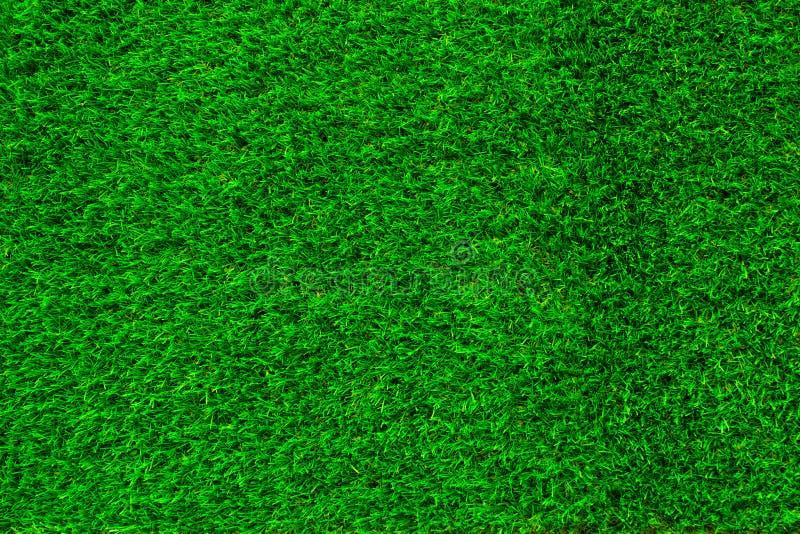Herbe verte Texture de fond naturel photo libre de droits