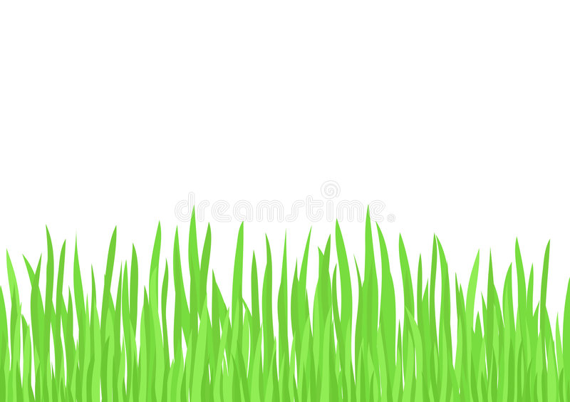 Herbe verte (vecteur) illustration de vecteur