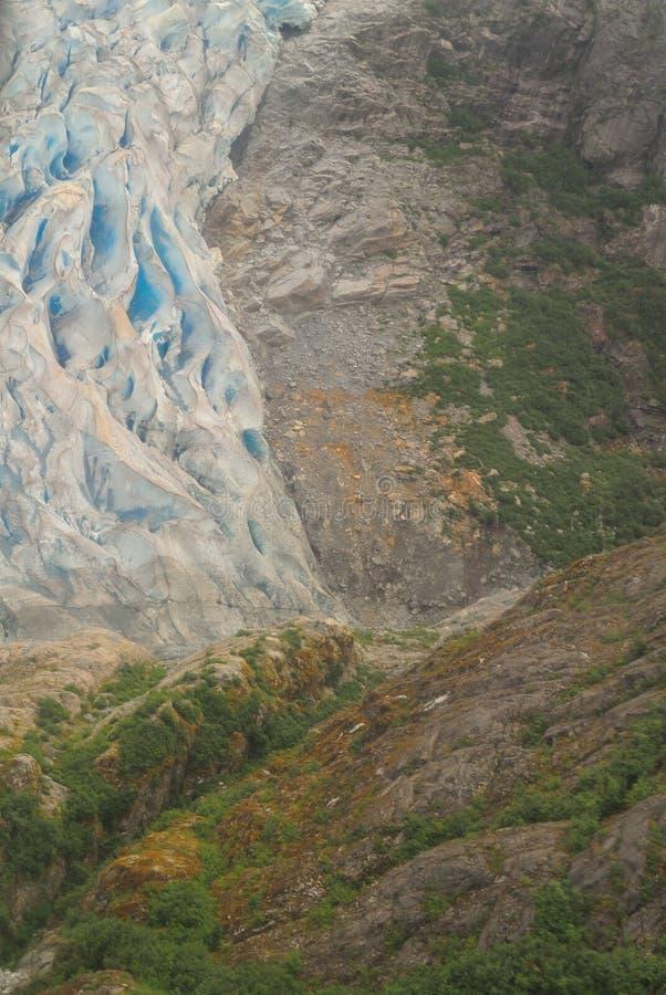 Herbert Glacier Toe royaltyfri bild