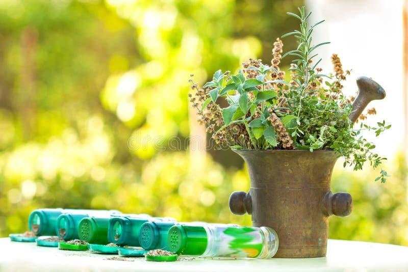 Herbes - épices photos libres de droits