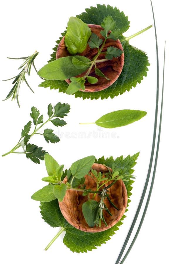 Download Herbes 003 photo stock. Image du épices, saveur, basilic - 2130358