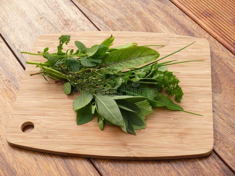 Herbes aromatiques photographie stock libre de droits