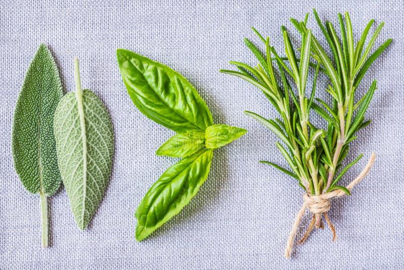Herbes aromatiques photographie stock