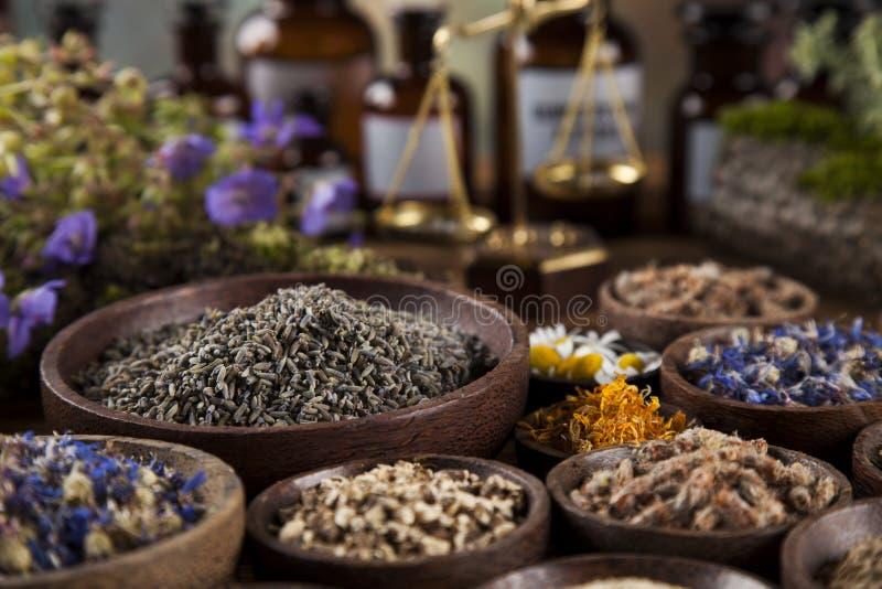 Herbes, baies et fleurs avec le mortier, sur le backgrou en bois de table image libre de droits