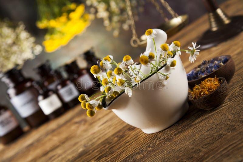 Herbes, baies et fleurs avec le mortier, sur le backgrou en bois de table images libres de droits