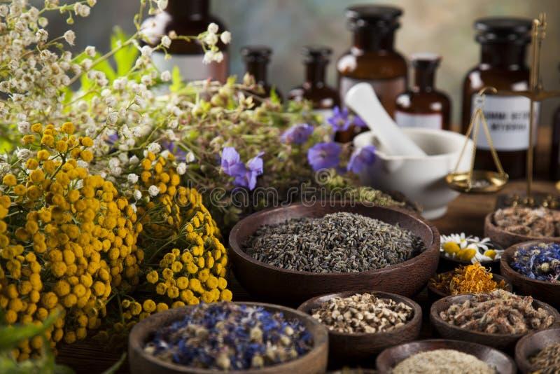 Herbes, baies et fleurs avec le mortier, sur le backgrou en bois de table images stock