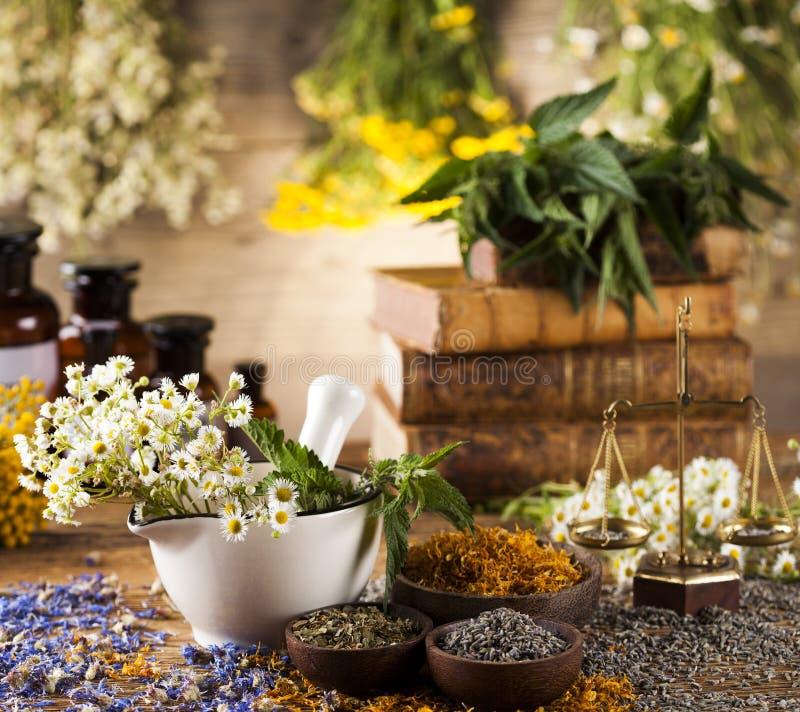 Herbes, baies et fleurs avec le mortier, sur le backgrou en bois de table image stock