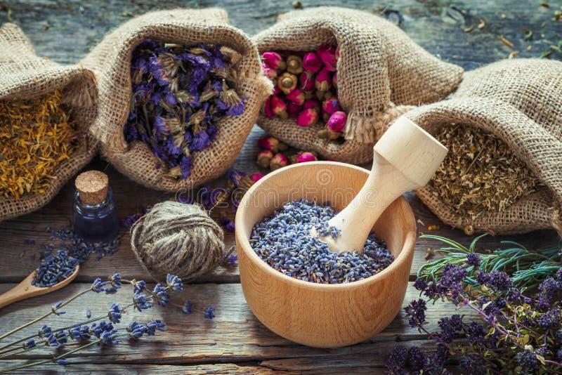 Herbes curatives dans les sacs hessois, mortier en bois avec la lavande sèche photographie stock libre de droits