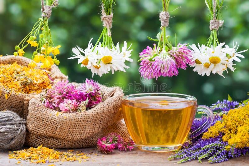 Herbes curatives, sacs avec les usines sèches et tasse de thé image libre de droits