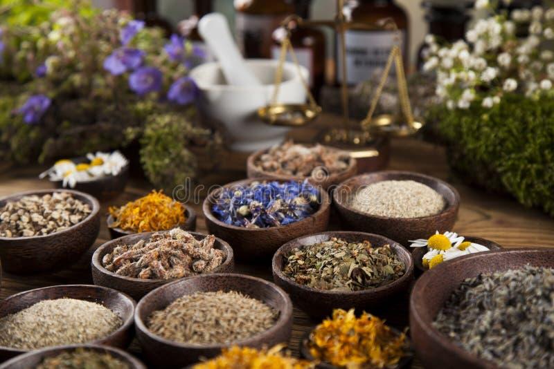 Herbes curatives sur la table, le mortier et la phytothérapie en bois images libres de droits
