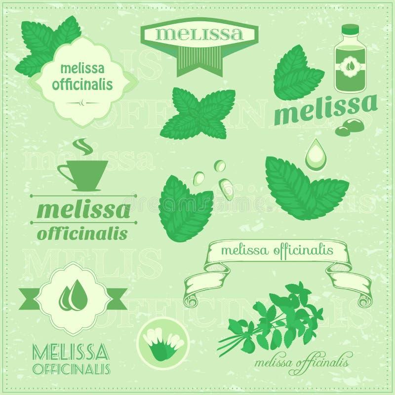 Herbes d'isolement, feuilles de vecteur de mélisse illustration stock
