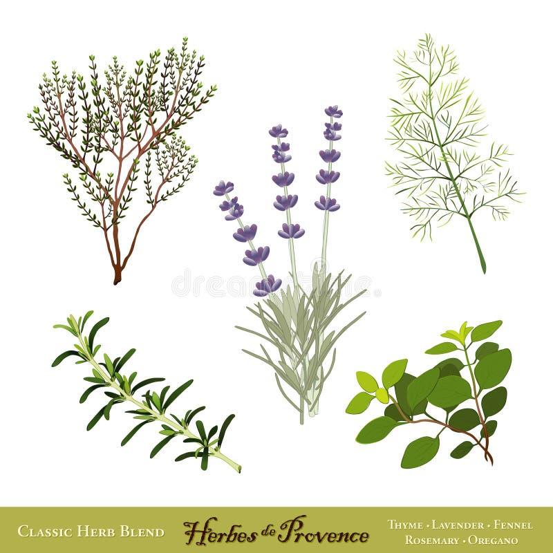 Herbes de Provence ilustração do vetor