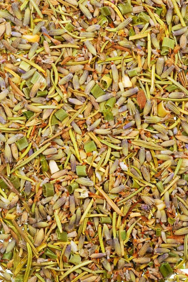 Herbes de Provence photographie stock libre de droits