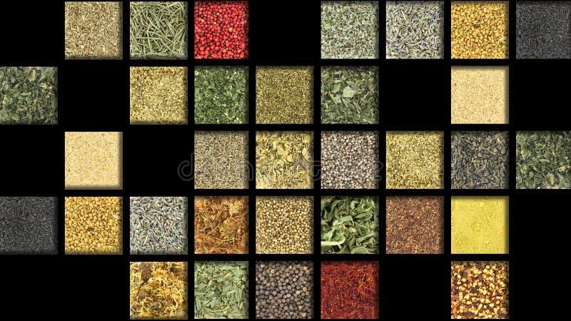 Herbes et épices photo libre de droits