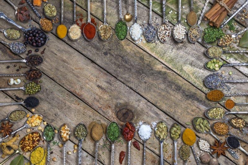 Herbes et épices - avec l'espace pour le texte image libre de droits