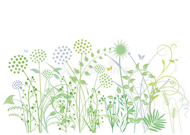 Herbes et herbes illustration stock