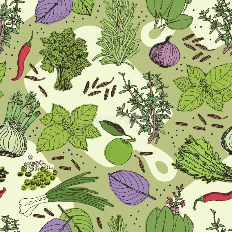 Herbes et modèle sans couture d'épice illustration libre de droits