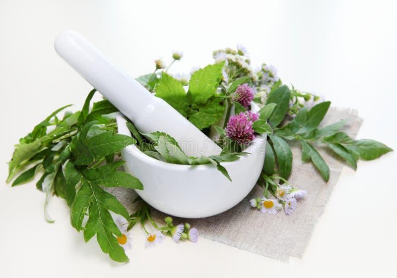 Herbes et mortier photographie stock