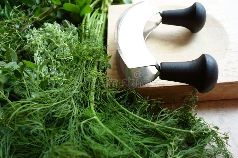 Herbes et ustensiles frais de hachage photos libres de droits