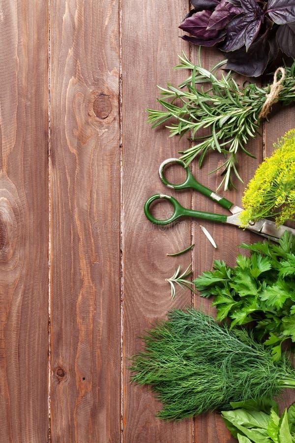 Herbes fraîches de jardin photos libres de droits
