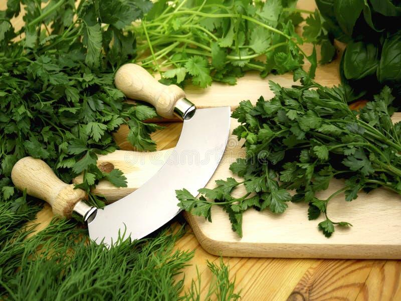 Herbes fraîches et aromatiques : ciboulette, persil, basilic, thym, coriandre, fenouil photos libres de droits