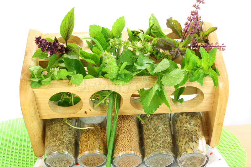 Herbes fraîches et sèches photographie stock