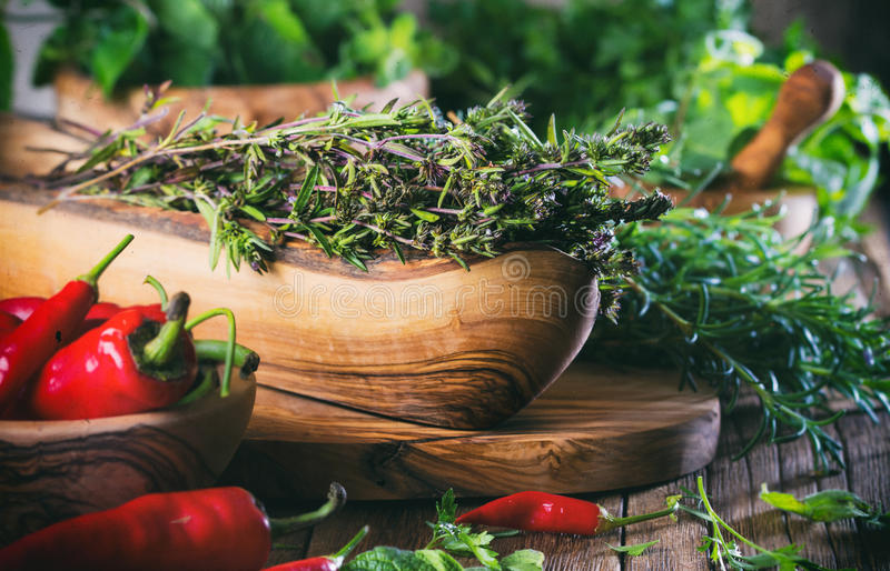 Herbes fraîches - thym, romarin, piment, menthe, persil photo stock