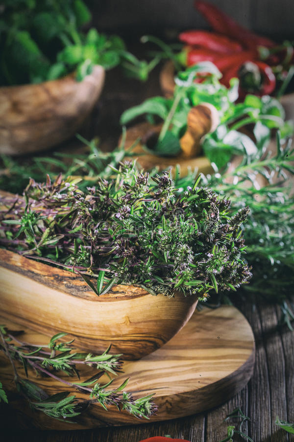 Herbes fraîches - thym, romarin, piment, menthe, persil photographie stock