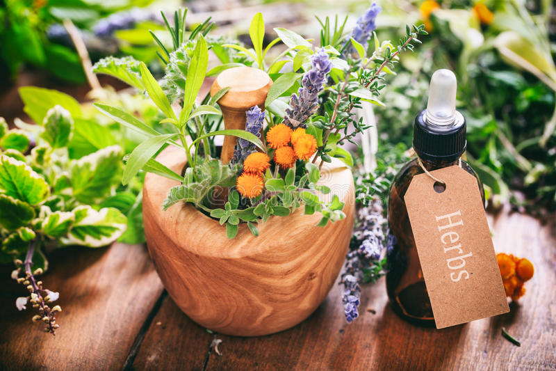 Herbes, huile essentielle et mortier sur le fond en bois images stock