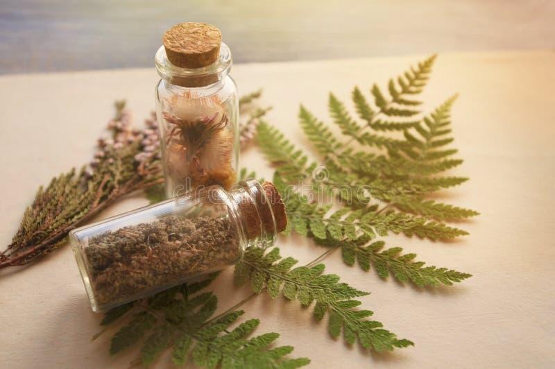 Herbes médicinales utiles en bouteilles de verre images stock